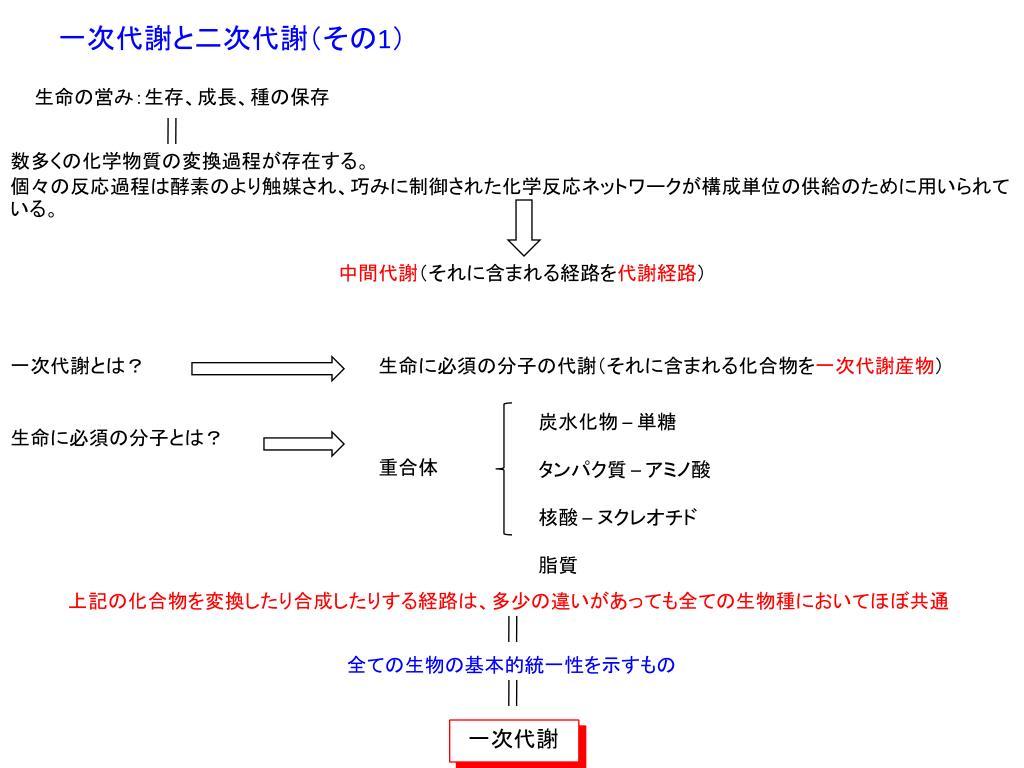 トリプトファン合成酵素 - Tryptophan synthase - JapaneseClass.jp