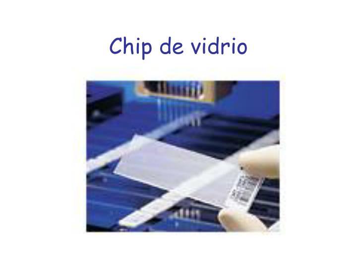 Chip de vidrio