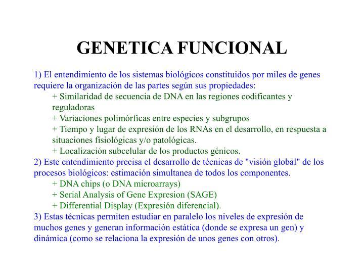 Genetica funcional2