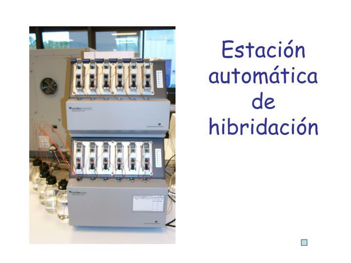 Estación automática de hibridación