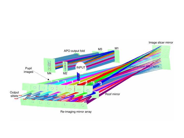 Integral Field Unit Optical Layout