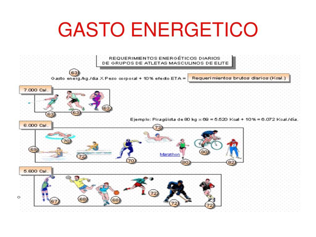 PPT - LA NUTRICIÓN EN EL DEPORTE PowerPoint Presentation..