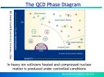 the qcd phase diagram