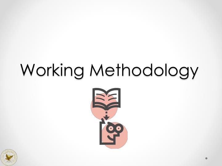 Working Methodology
