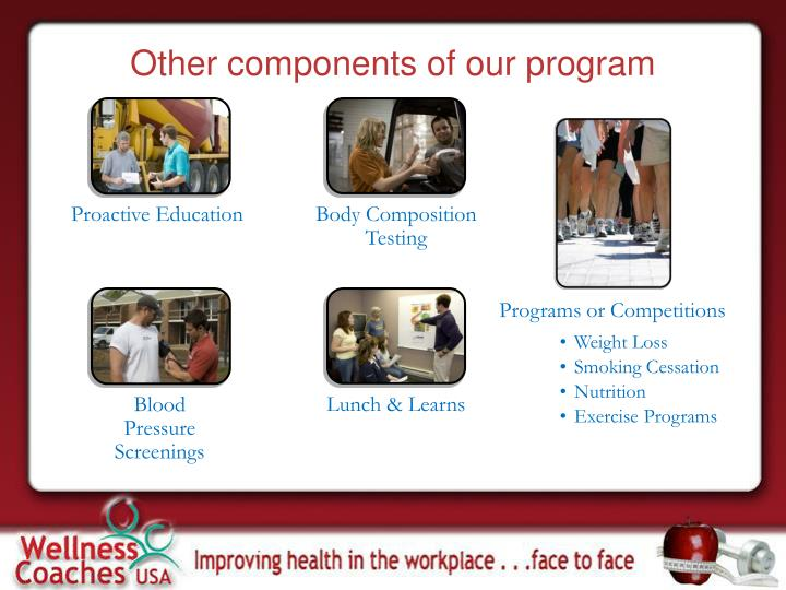 Other components of our program