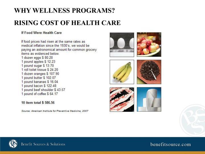 WHY WELLNESS PROGRAMS?