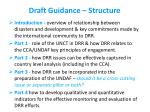 draft guidance structure