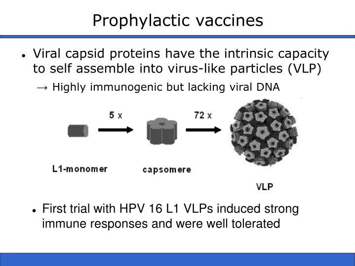 Prophylactic vaccines