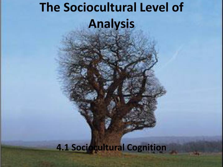 the sociocultural level of analysis n.