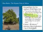 shea butter the organic gem of africa
