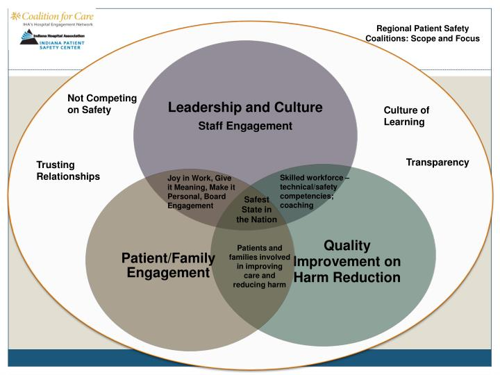 Regional Patient Safety Coalitions: Scope and Focus