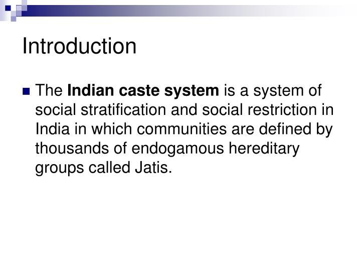 define caste system in india