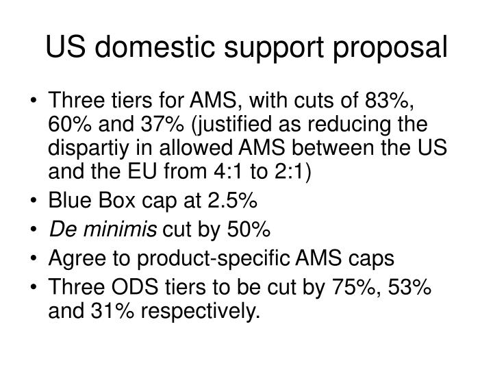 US domestic support proposal