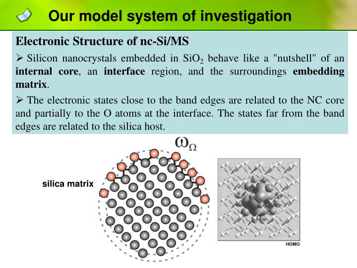 Our model system of investigation