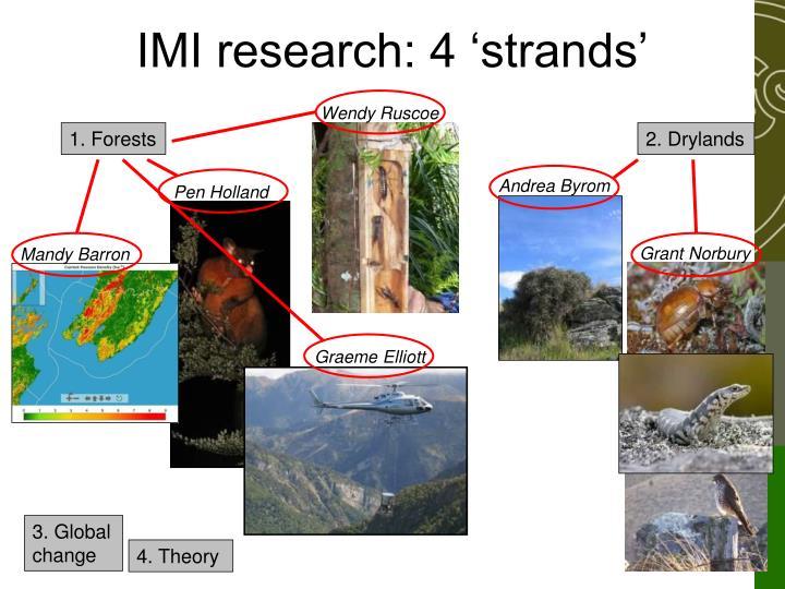Imi research 4 strands