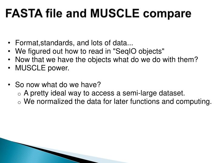 FASTA file and MUSCLE compare