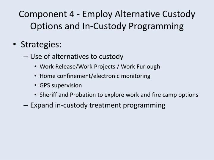Component 4 - Employ Alternative Custody Options and In-Custody Programming