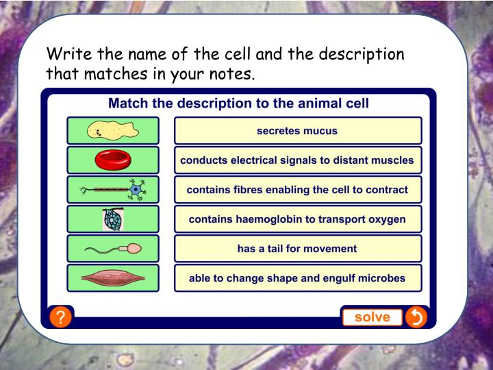 Write the name of the cell and the description that matches in your notes.