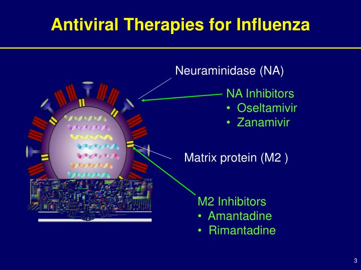 Antiviral therapies for influenza