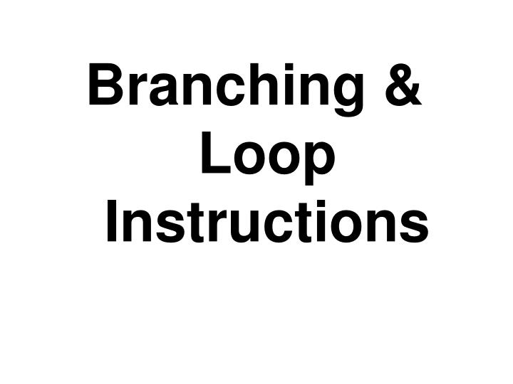 Branching & Loop Instructions