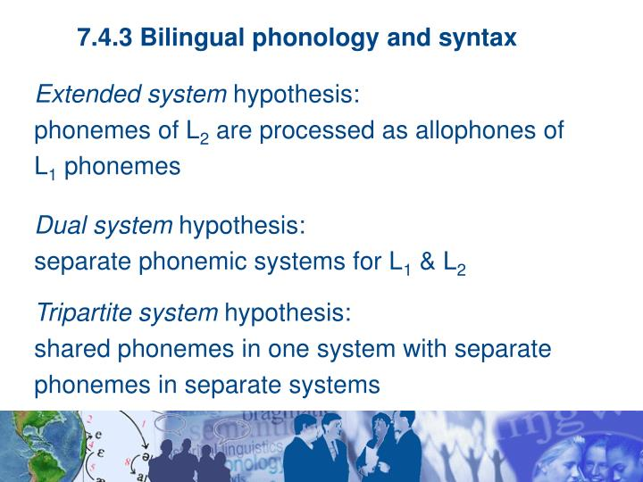7.4.3 Bilingual phonology and syntax