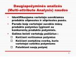 daugiapo ymin s analiz s multi attribute analysis naudos