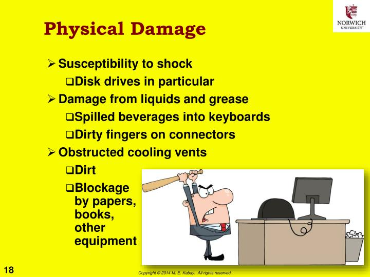 Physical Damage