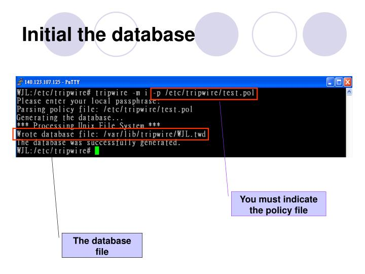 Initial the database