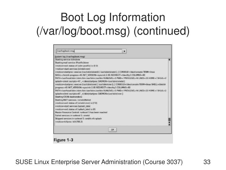 Boot Log Information (/var/log/boot.msg) (continued)