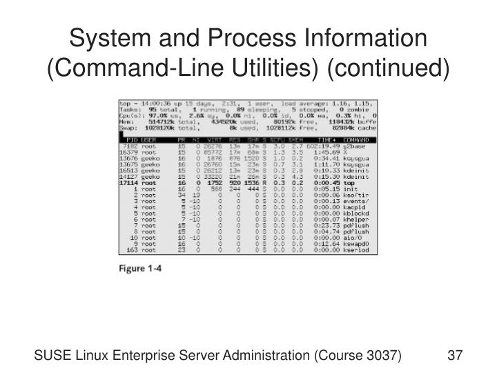 System and Process Information (Command-Line Utilities) (continued)