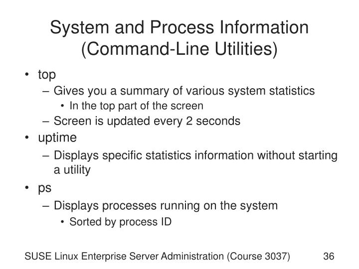 System and Process Information (Command-Line Utilities)