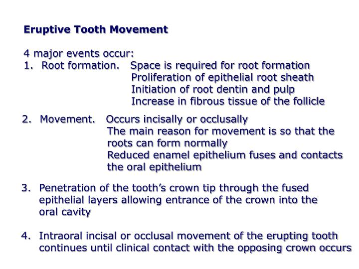 Eruptive Tooth Movement