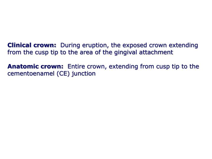 Clinical crown: