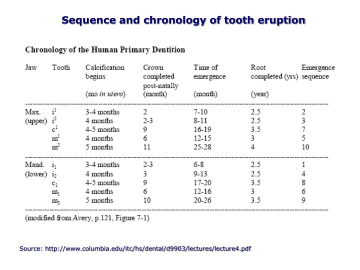 Sequence and chronology of tooth eruption