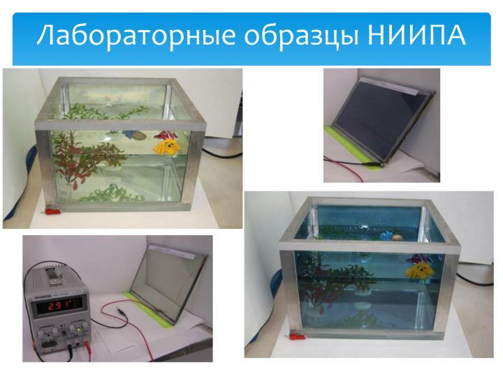 Лабораторные образцы НИИПА