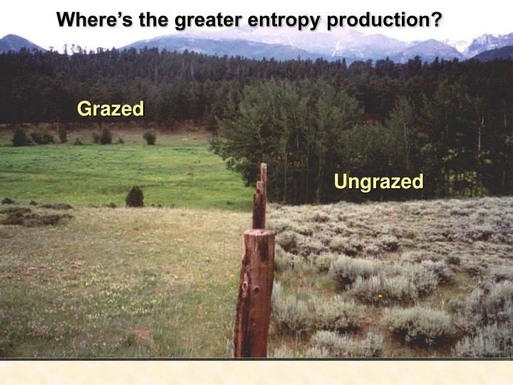Where's the greater entropy production?