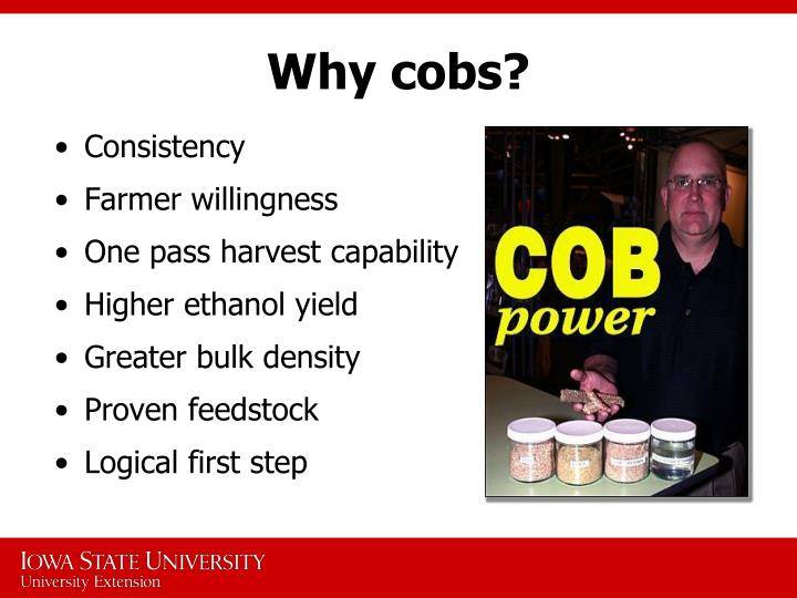 Why cobs?