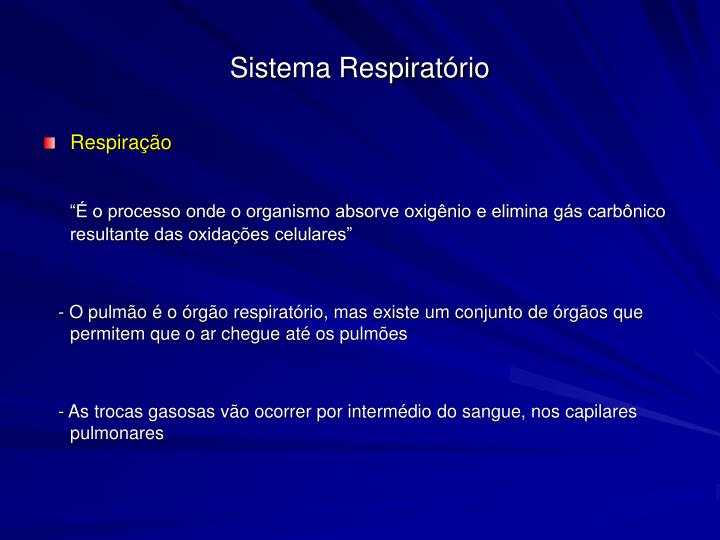 Sistema respirat rio1