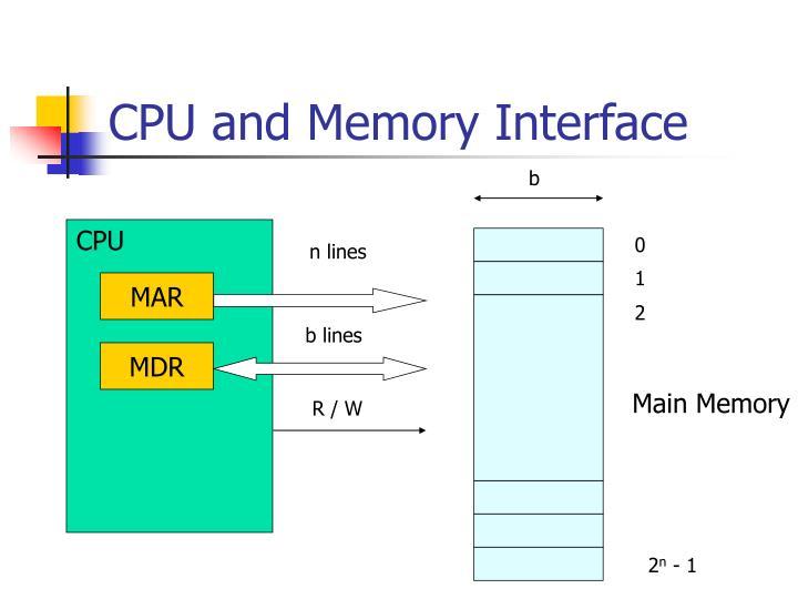 CPU and Memory Interface
