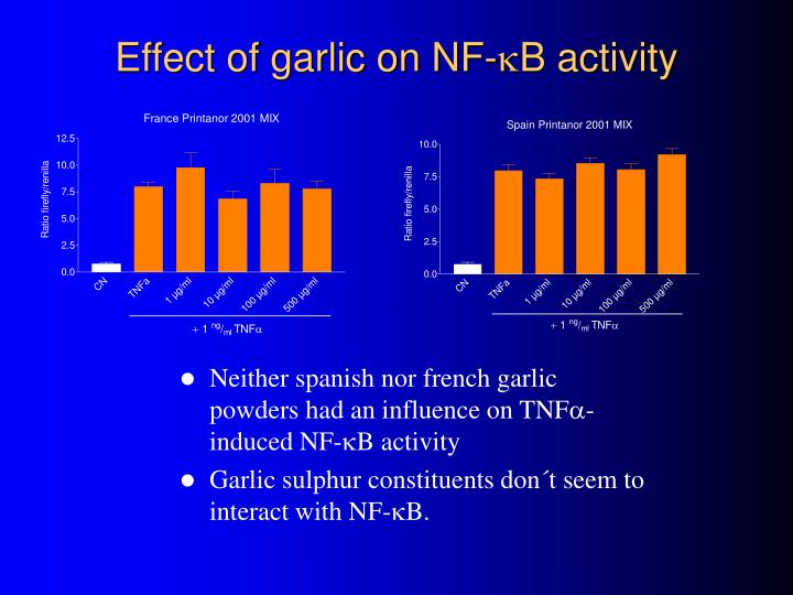 Effect of garlic on nf b activity