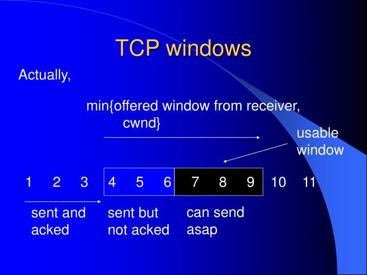 TCP windows
