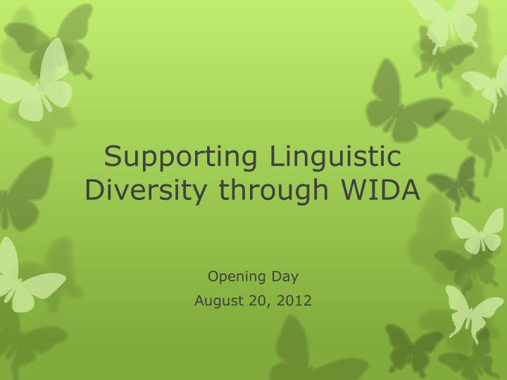 Supporting linguistic diversity through wida
