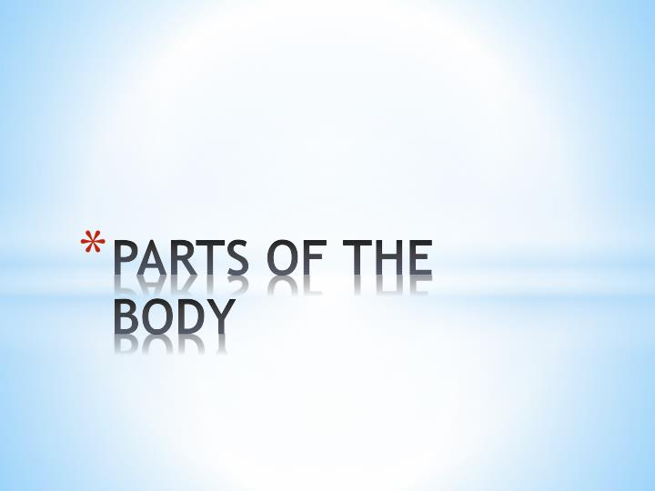parts of the body n.