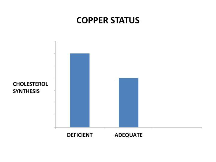 COPPER STATUS