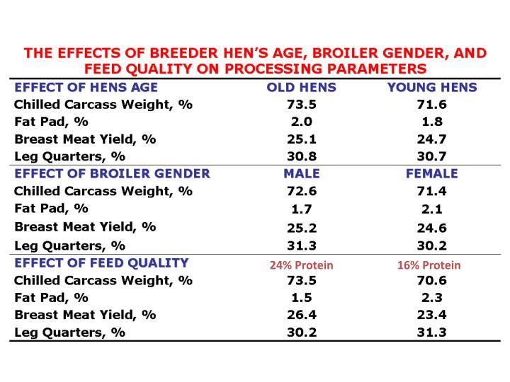 24% Protein