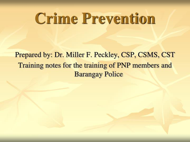crime prevention n.