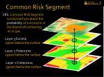common risk segment