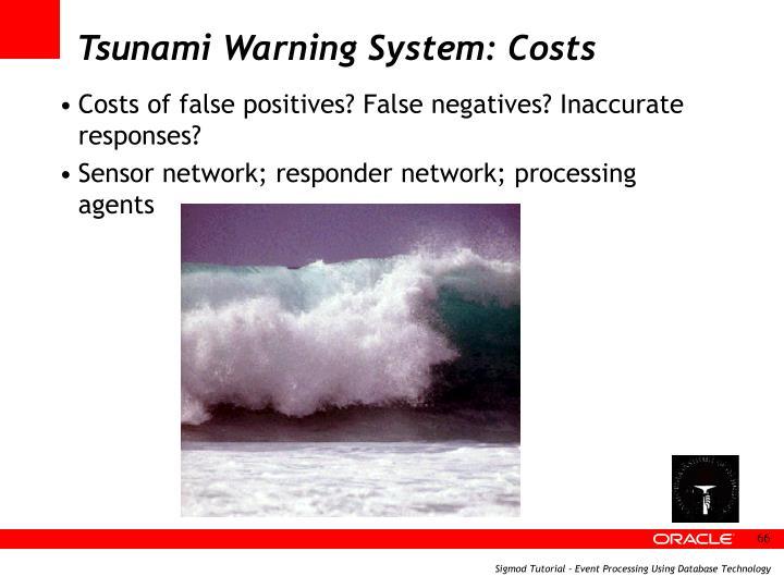 Tsunami Warning System: Costs