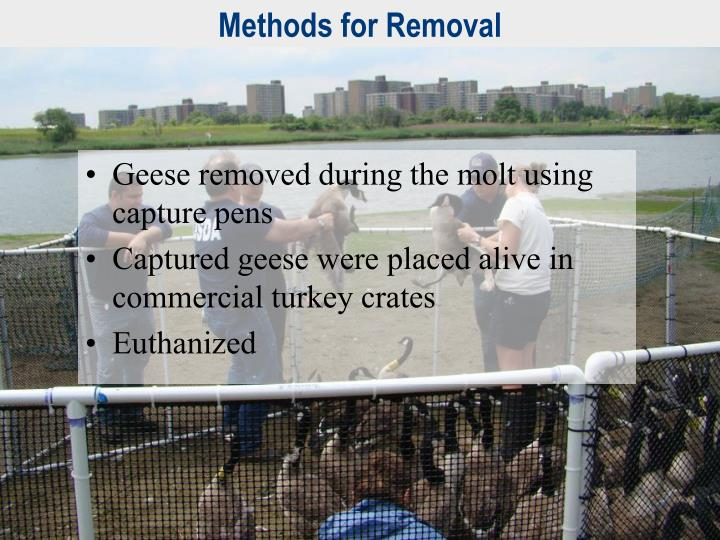 Methods for Removal