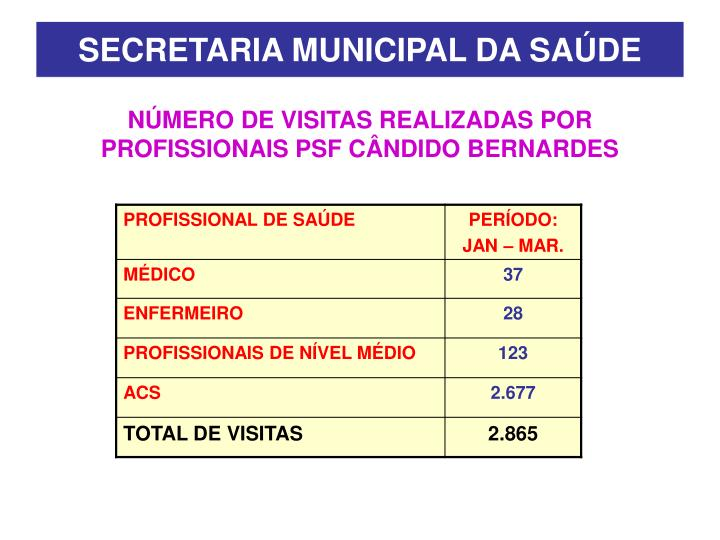 NÚMERO DE VISITAS REALIZADAS POR PROFISSIONAIS PSF CÂNDIDO BERNARDES